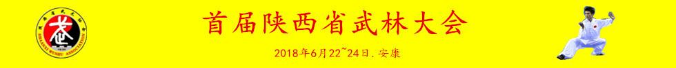 首届陕西省武林大会竞赛规程(3附件)