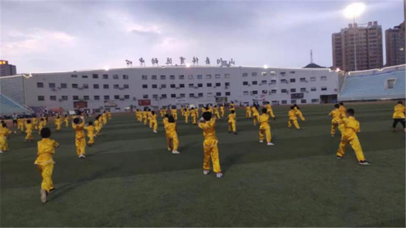 商洛市武术协会第十一个全民健身日报道 (文图(1)794