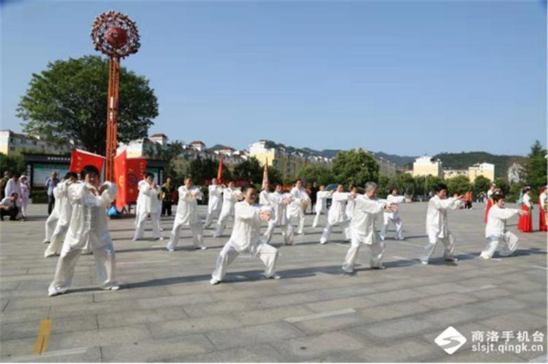 商洛市武术协会第十一个全民健身日报道 (文图(1)744