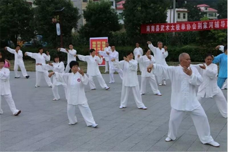 商洛市武术协会第十一个全民健身日报道 (文图(1)776